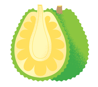 jackfruit icon